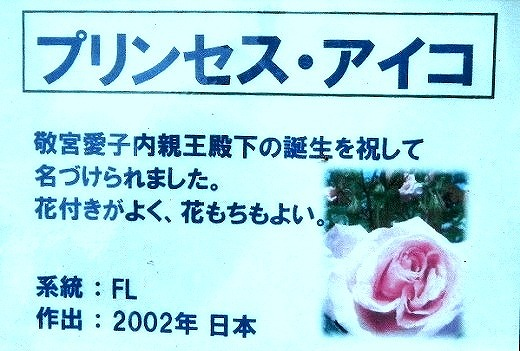 s-s-DSCN2426.jpg
